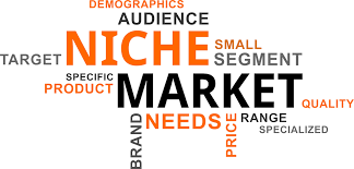How To Make Money With Amazon Associate Program - Find A Niche